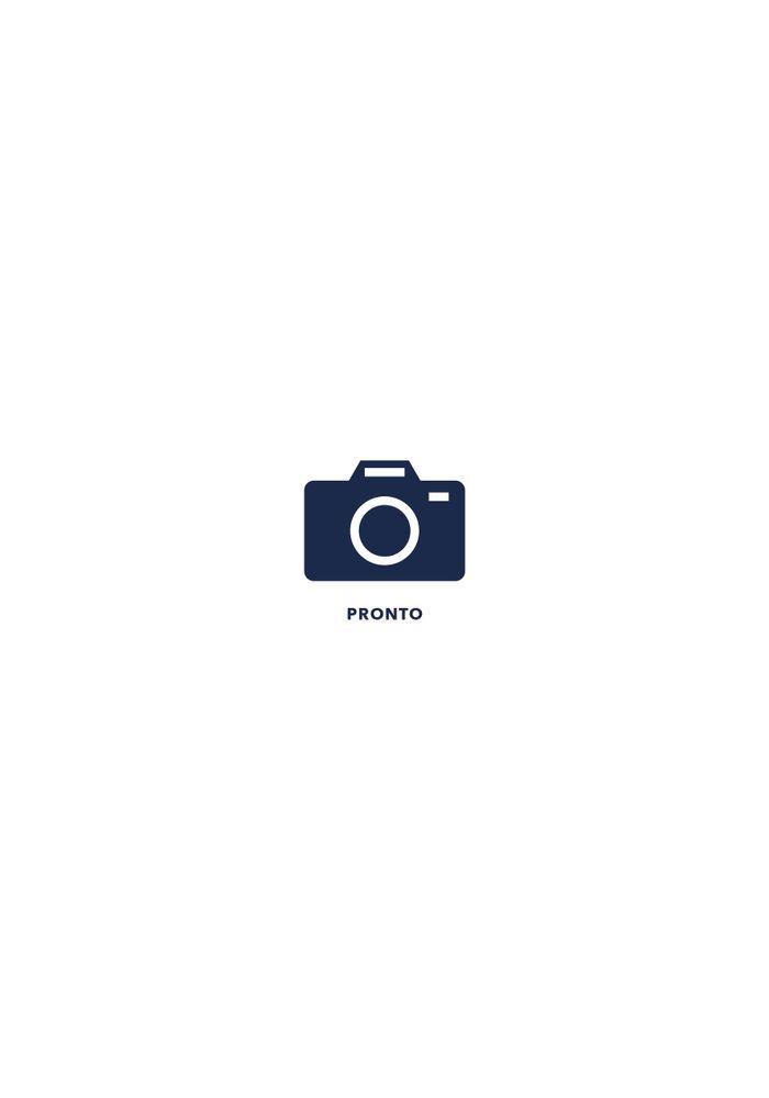 PRONTO_FE_-1